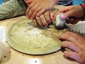 Vom Korn zum Brot (8)